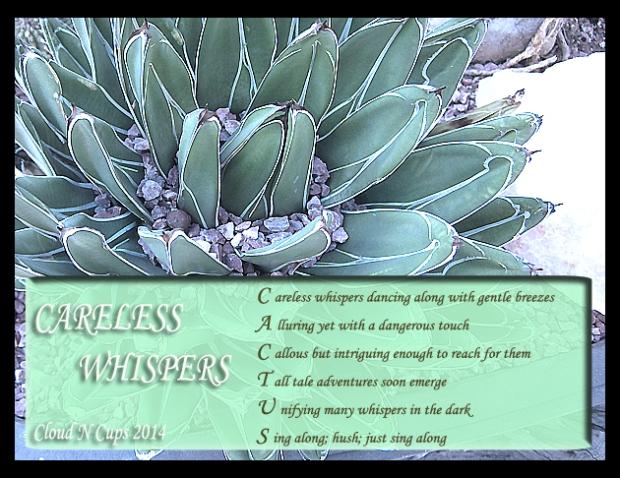 29102914 - Careless Whispers
